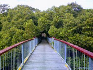 Best parks Georges River - Oatley Park