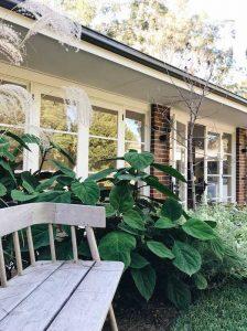 Garden design in Oatley, Sydney
