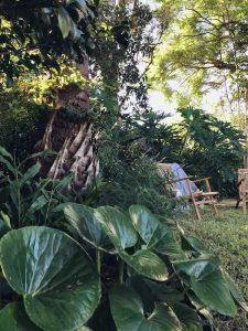 The garden social, Oatley