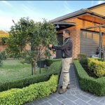 Garden and property care in Oatley, Sydney